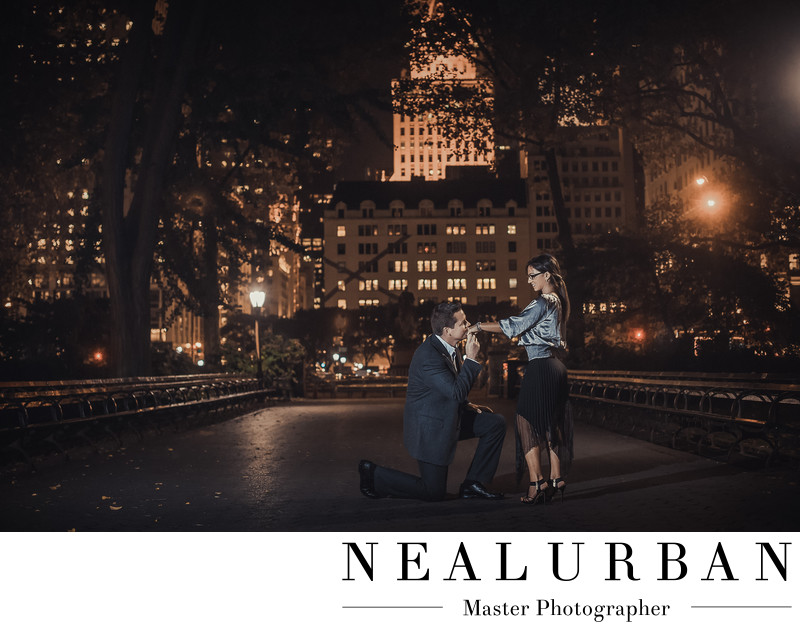 NYC wedding engagement photographers central park