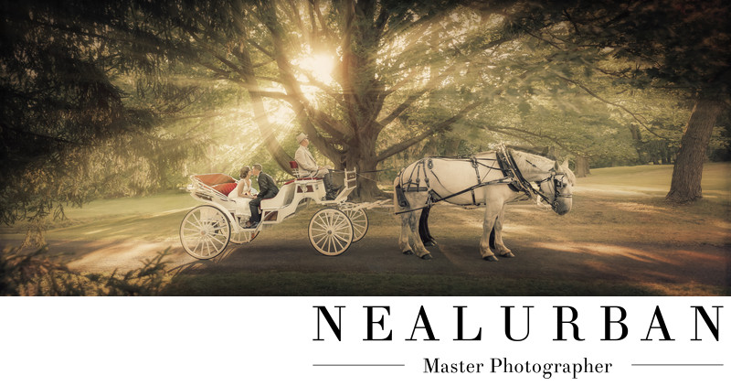 buffalo wedding horse and buggy rental vintage theme