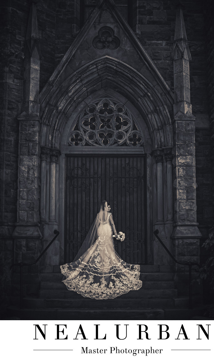 Buffalo bridal portrait at st louis church doors wedding dress