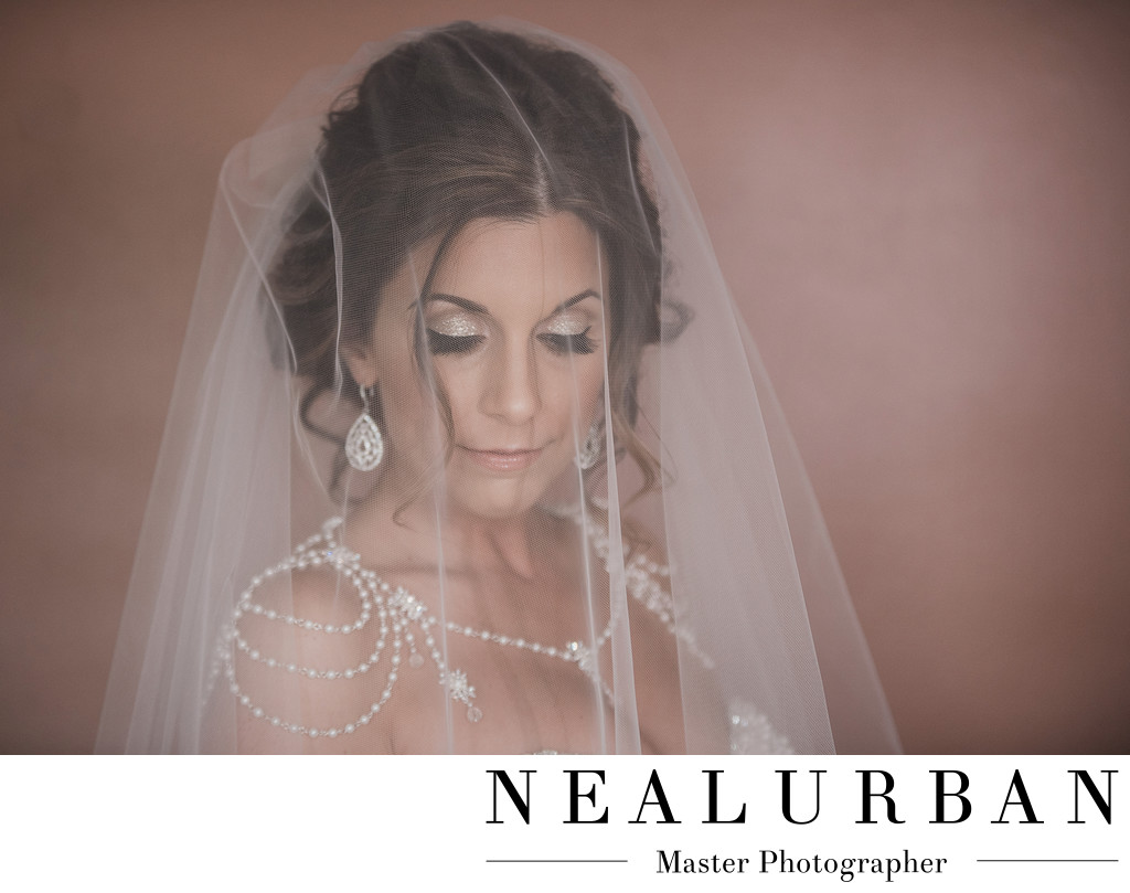 Buffalo Wedding bride veil makeup artist photography