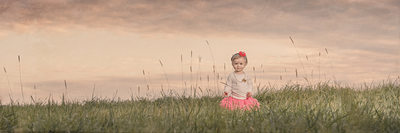 buffalo family photographers lifestyle tall grass knox farm