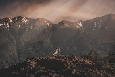 Anchorage Alaska Wedding Photographers Mountains Summer