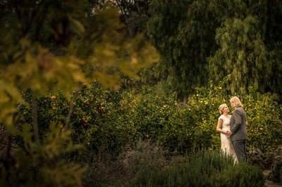 Ojai Estate Wedding Photographer