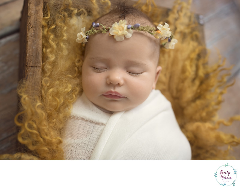 Baby in flower crown-Culver City Newborn photos