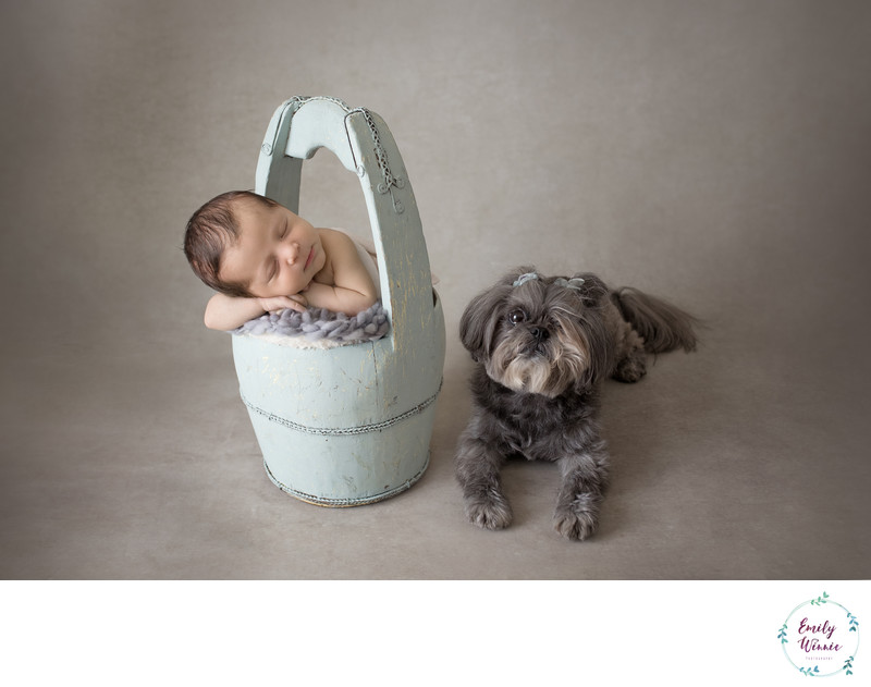 Emily Winnie Photography-Newborn with Dog