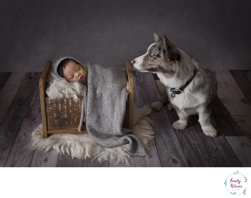 Emily Winnie Photography- Baby with doting dog