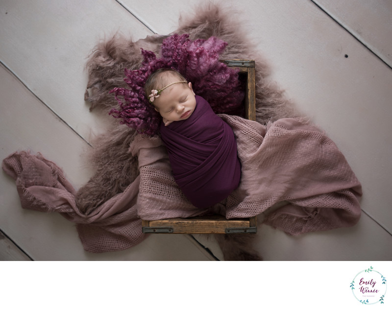 Emily Winnie Photography-Baby in Mauve in Crate