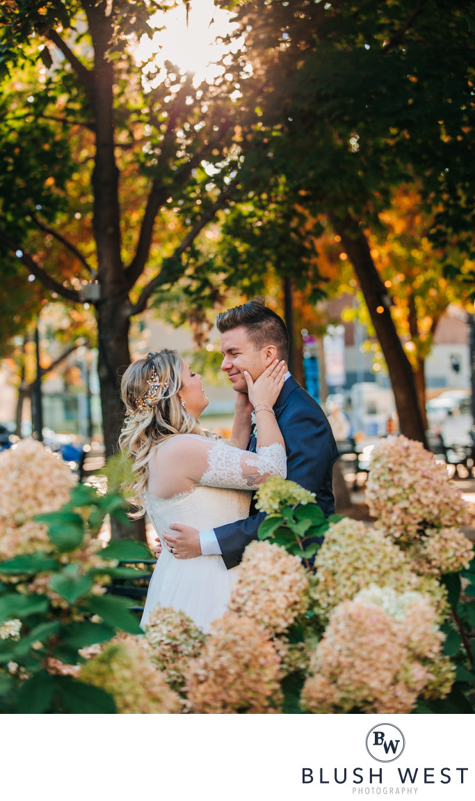 Gore Park Wedding