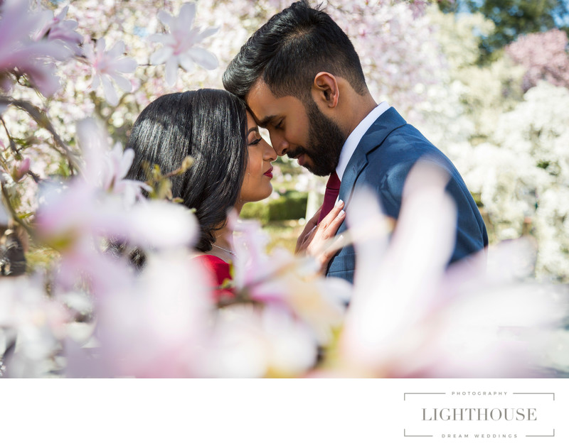 Brooklyn Botanical garden engagement photography