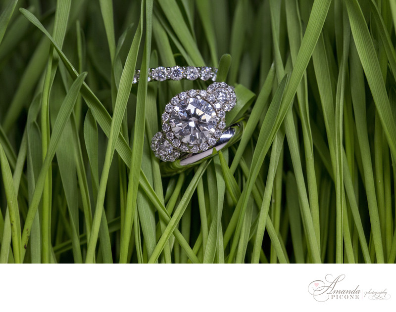 Wedding and engagement rings in grass NY Botanical Garden