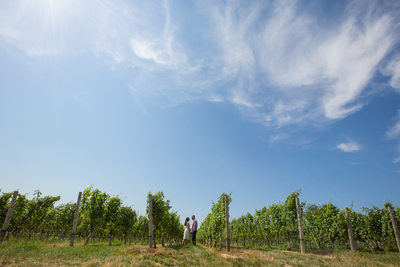 Vineyard Engagement photography North Fork Long Island