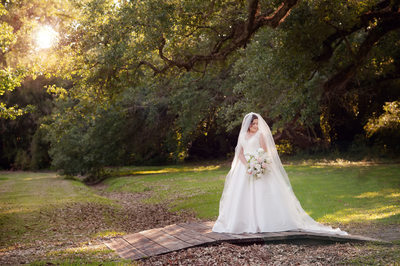 Fairfax House outdoor sunlit bridal photo