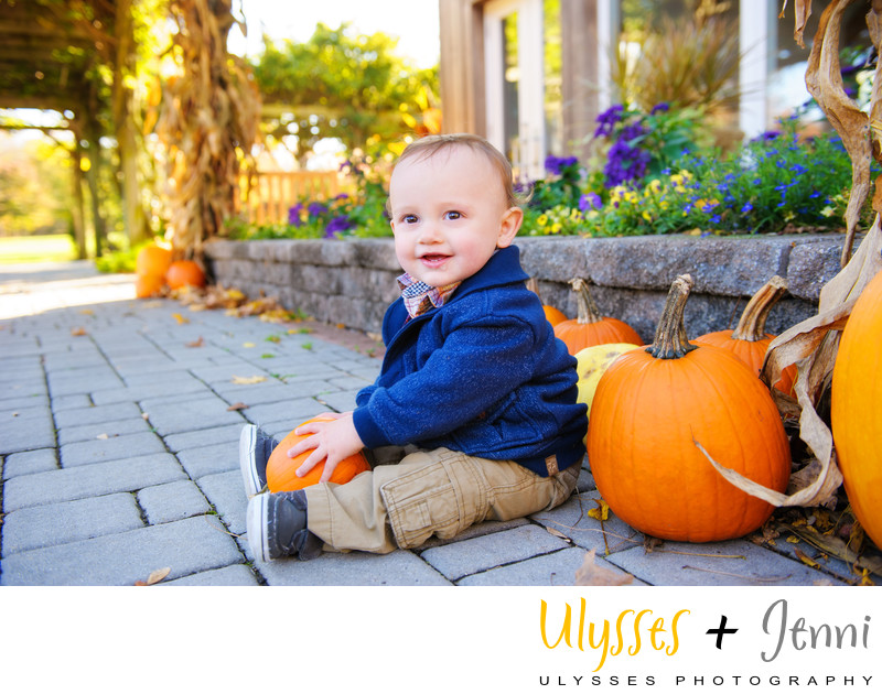 Baby Portrait with Pumpkins PORTRAIT WITH PUMPKINS