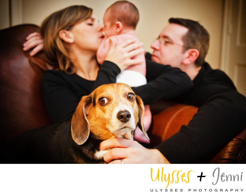 Newborn Photo Shoot with Dog - Hudson Valley