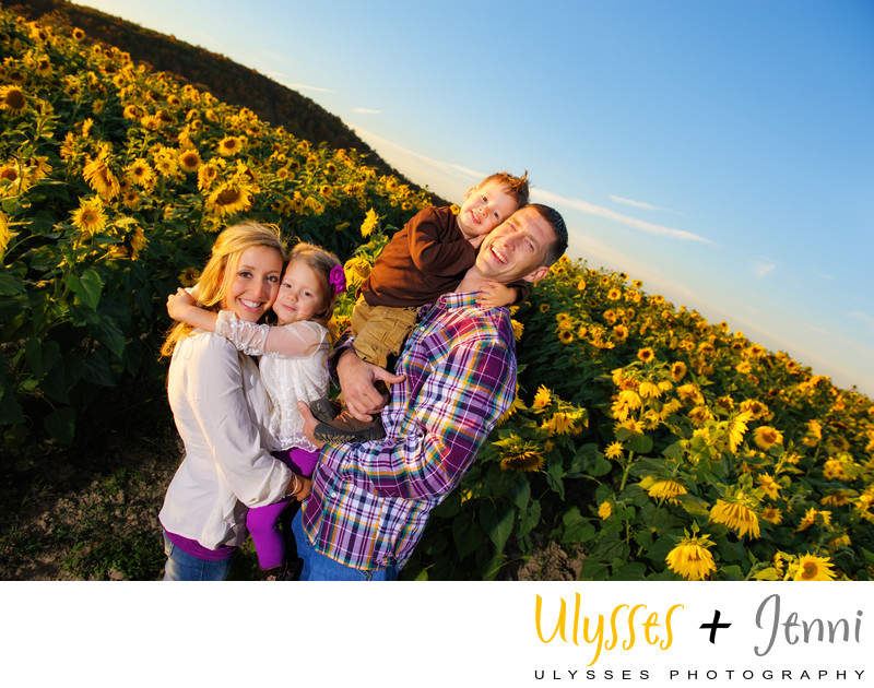 Sunflower Field Family Portrait