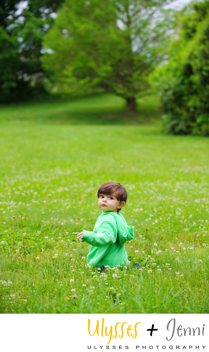 Little Boy Portrait In A Field of Green