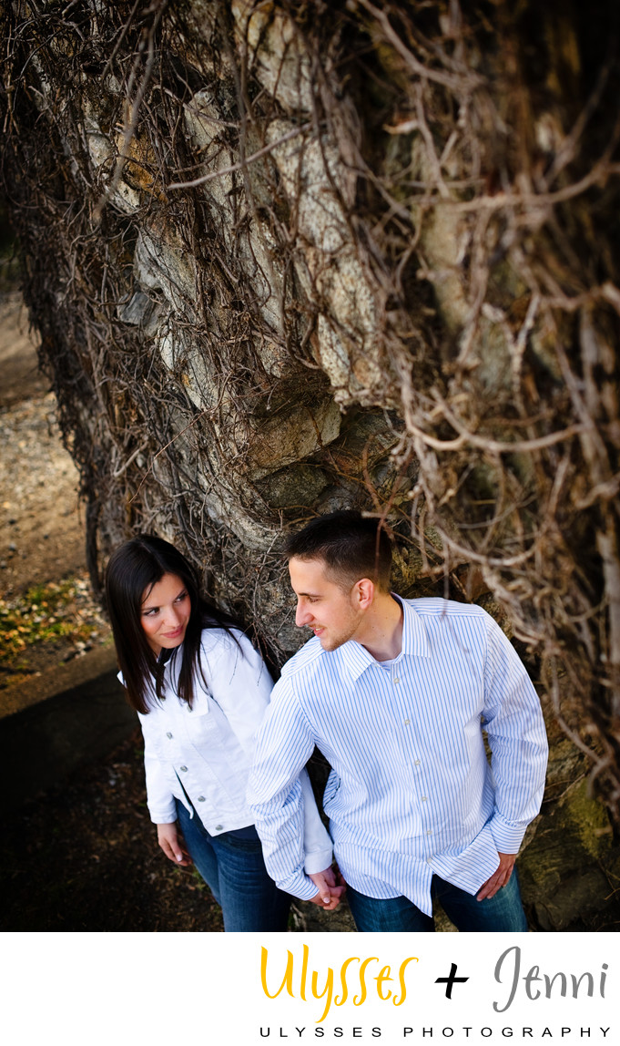 Amazing Tree Engagement Photo