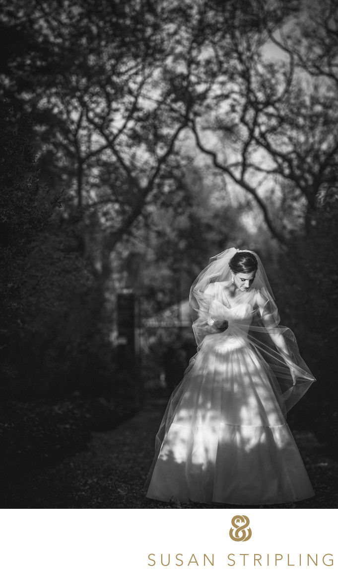 Wedding Photography at Winterthur