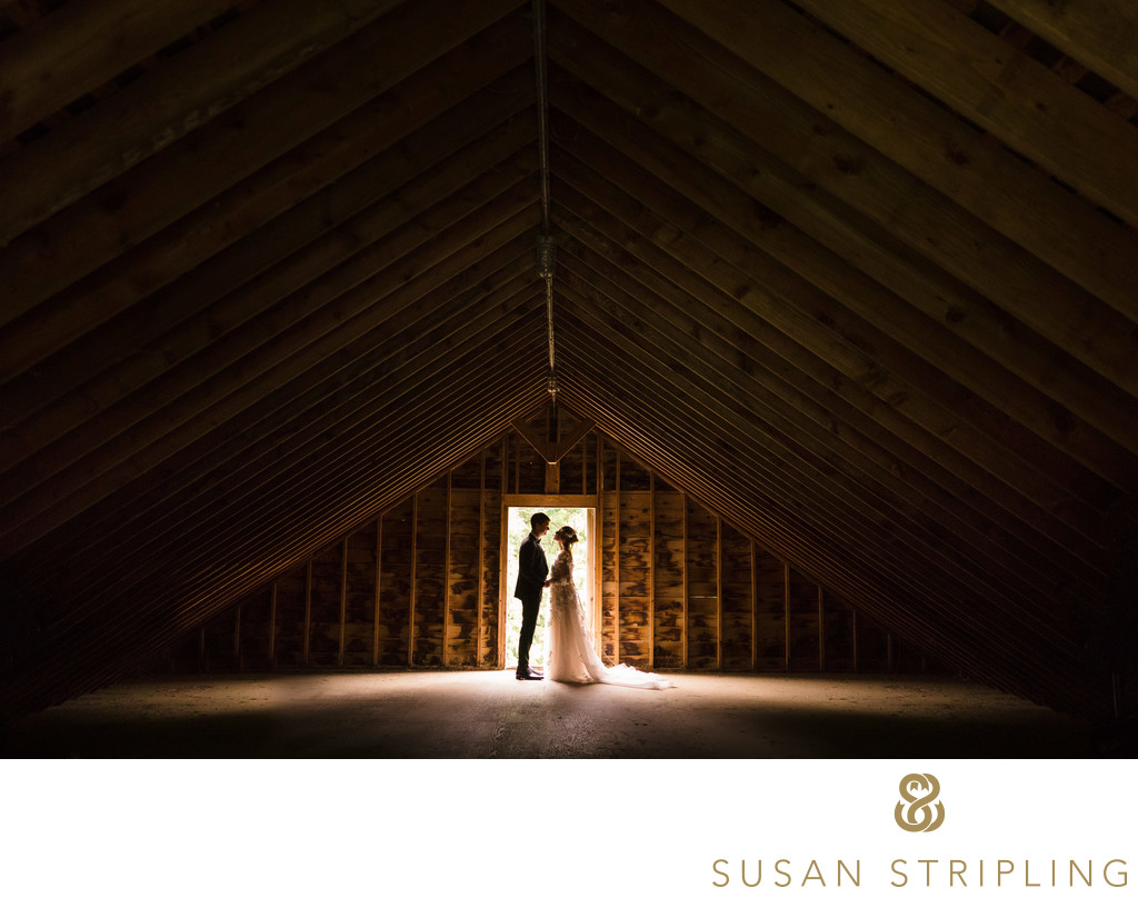 Wedding Photographer Bridgehampton