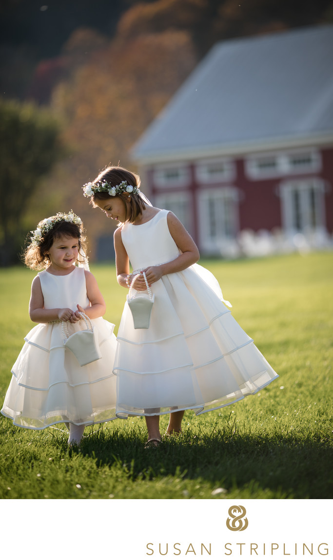 Southern Vermont Wedding Photographers