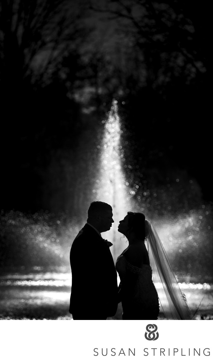 Park Chateau Estate and Gardens Wedding Photographer