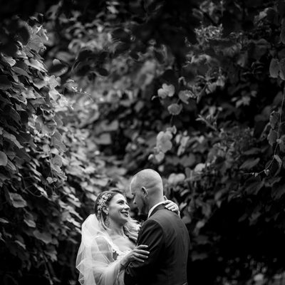 Flowerfield Wedding Photos