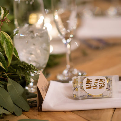 Red Lion Inn Cohasset Wedding MA