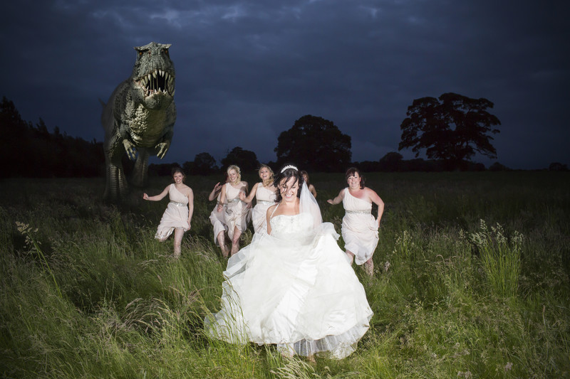 dinosaur wedding party
