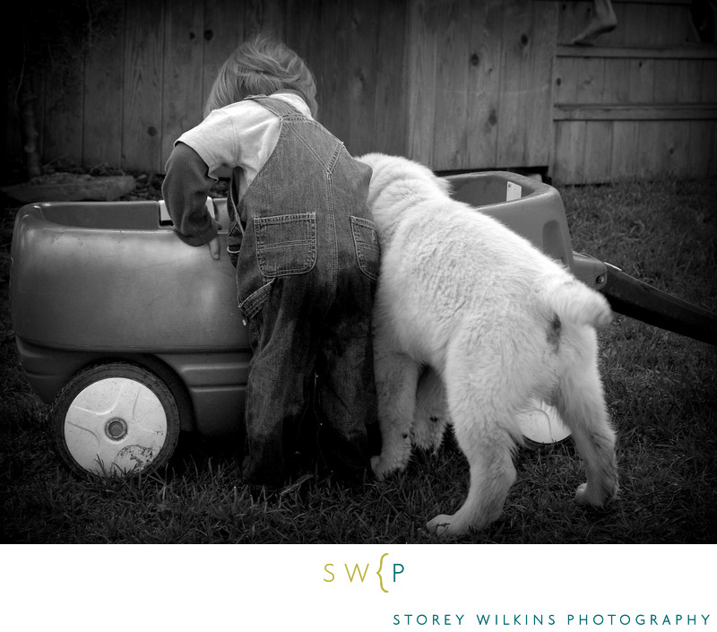 Baby Puppy and Wagon