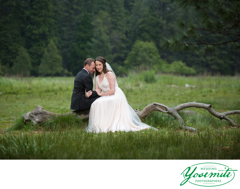 Bride And Groom In Meadow Yosemite Wedding