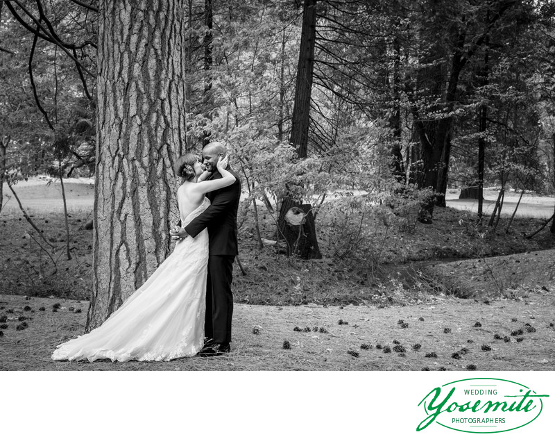 Bride Embraces Groom After First Look At Majestic Yosemite Hotel