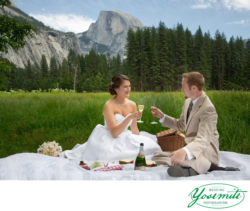 Newlyweds picnic in Cook's Meadow