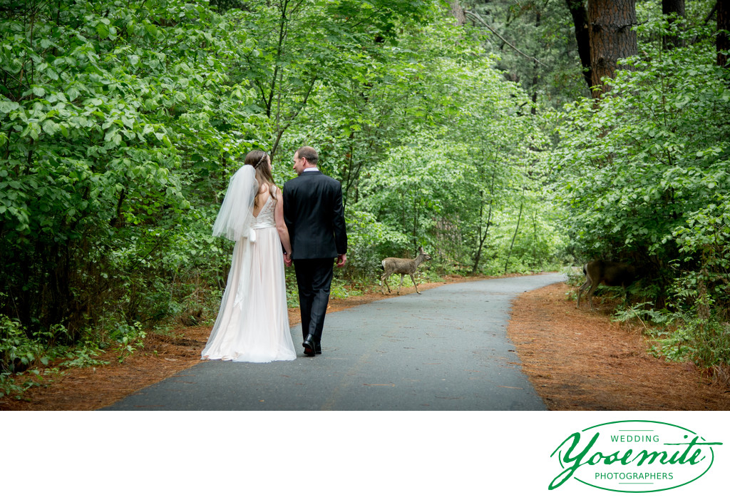 Bride And Groom Walk With Deer at Majestic Yosemite Hotel