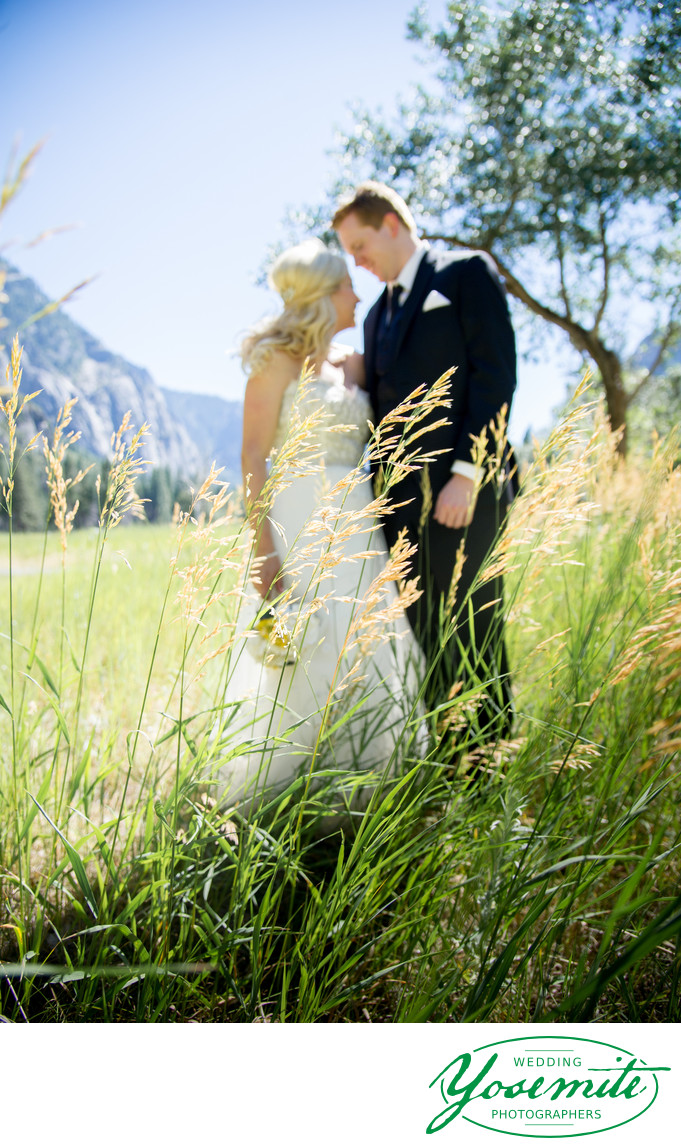 couple in meadow, yosemite