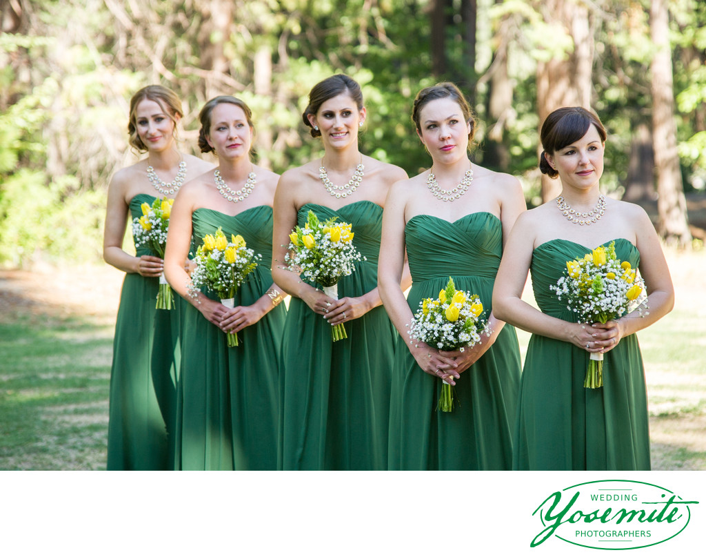 bridemaids yosemite