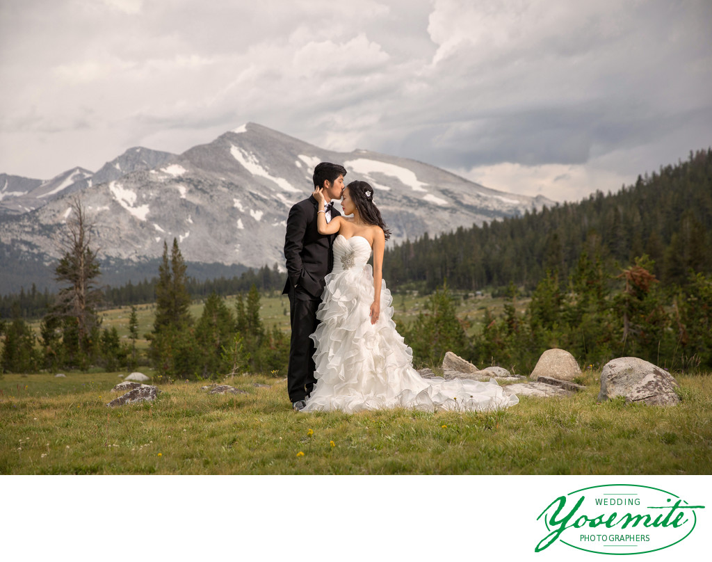 Wedding Couple at Tioga Pass
