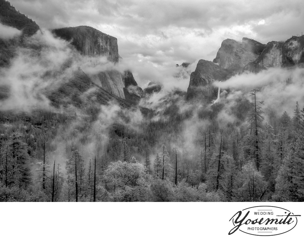 After a Storm Yosemite