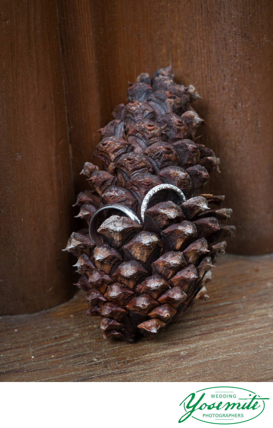 Wedding Rings In Pinecone at Majestic Yosemite Hotel