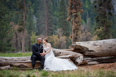 Bride And Groom Kissing On Fallen Log in Yosemite