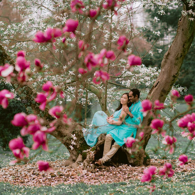 The Spring Engagement Portraits at Longwood gardens