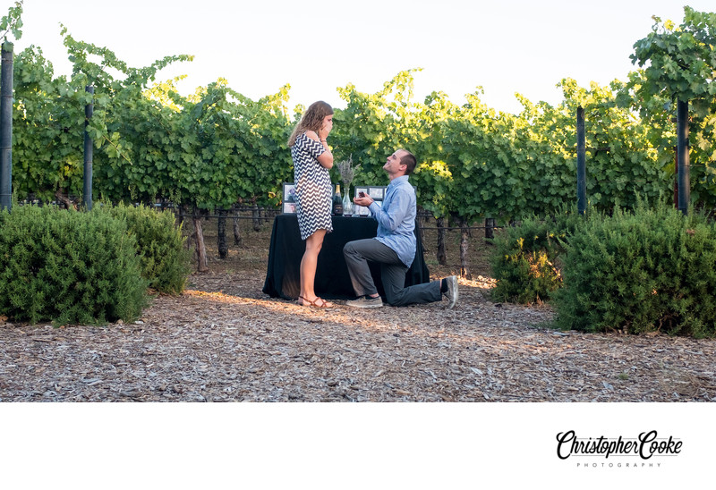 Napa Valley Proposal Photographer