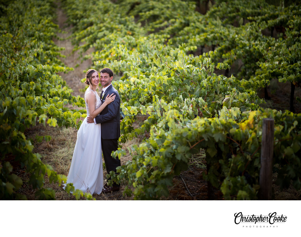 amador cellars wedding photographer