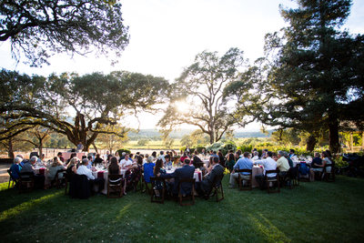 Beautiful Wine Country Wedding Reception