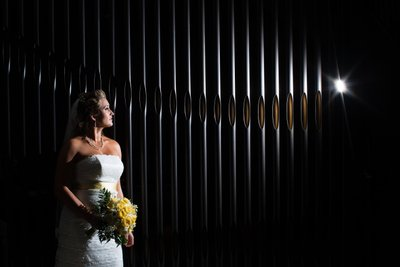 Wedding Picture with Dramatic Lighting