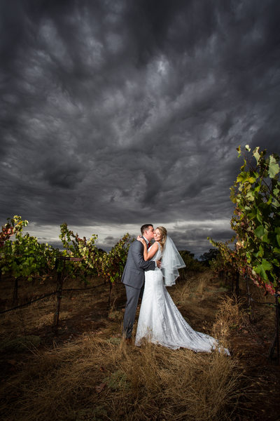 amador cellars wedding pictures