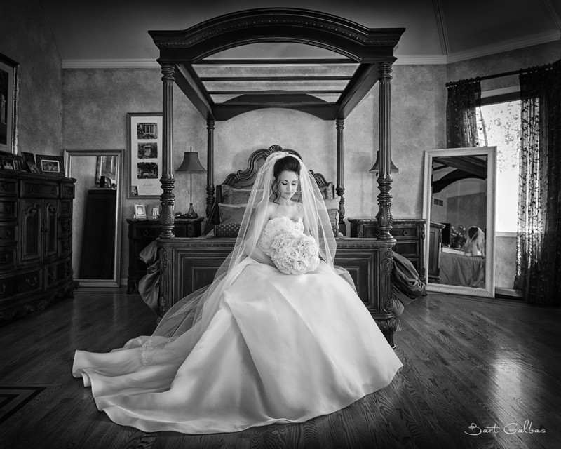 Top Wedding Photographers in Chicago