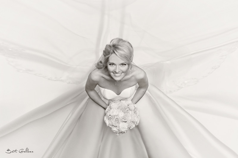 Wedding Photography in Northbrook
