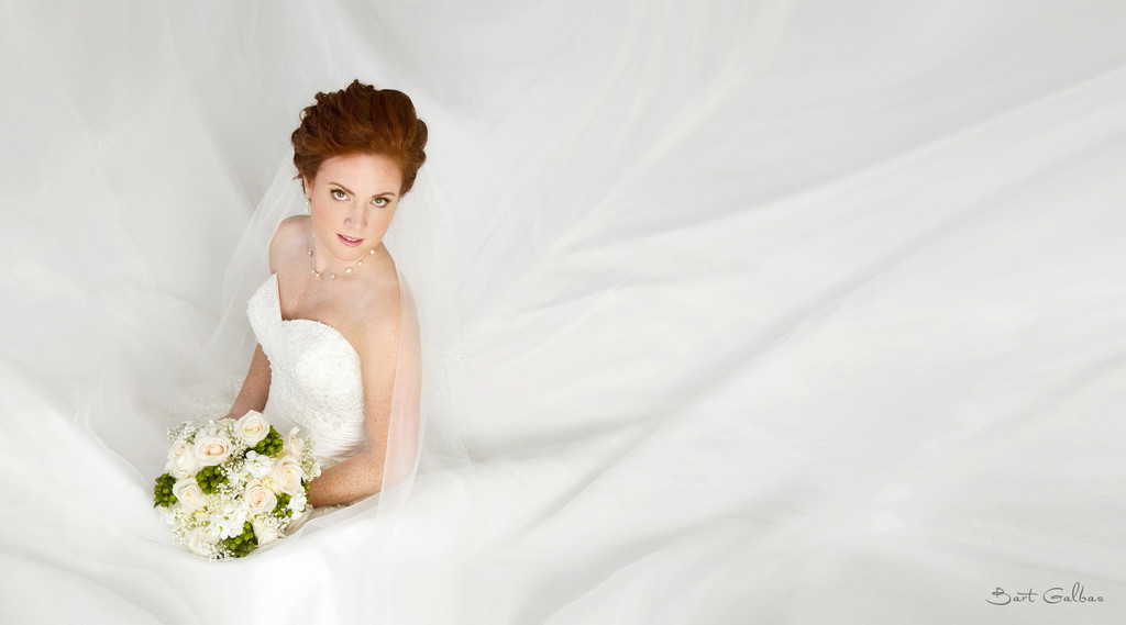 Wedding Photographers in Glenview