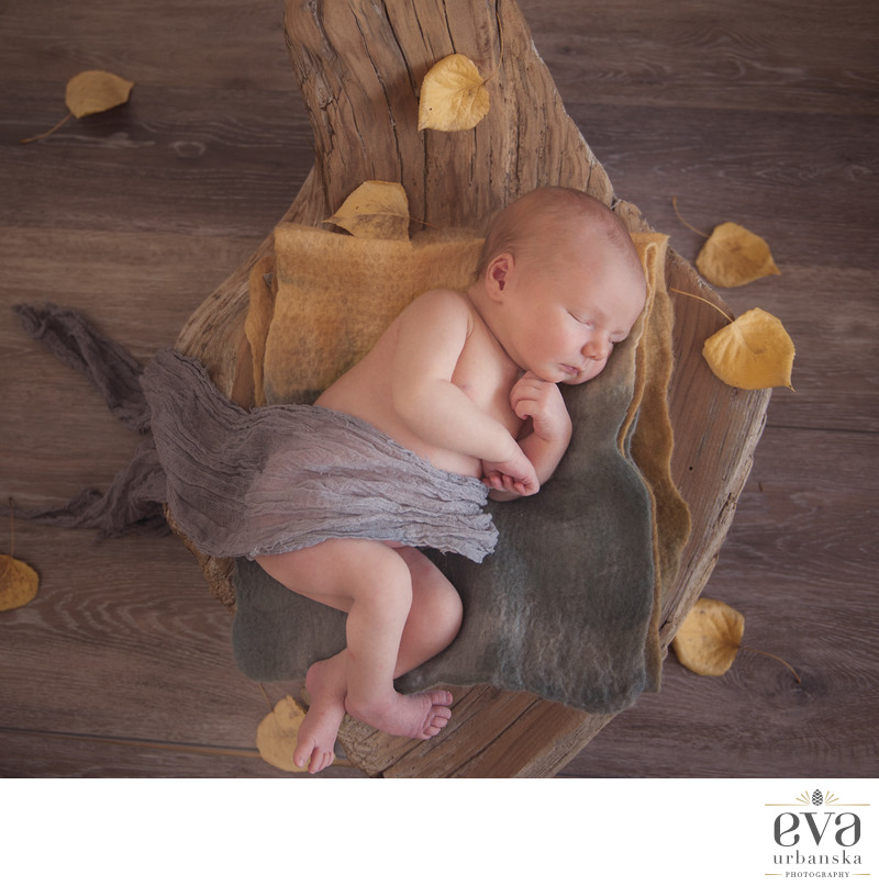 Newborn photographer in Canmore