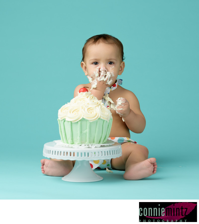 Cake Smash One Year Old Photo Session